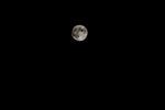 中秋の名月_3.jpg