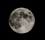 中秋の名月_2.jpg